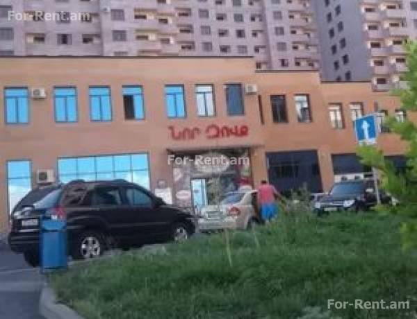 3-senyakanoc-bnakaran-vardzakalutyun-Yerevan-Avan