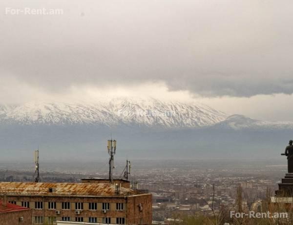 arandznatun-vardzakalutyun-Yerevan-Qanaqer-Zeytun