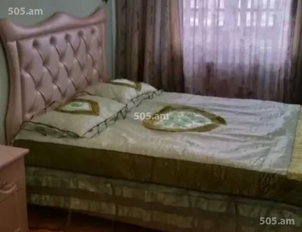 3-senyakanoc-bnakaran-vardzakalutyun-Yerevan-Arabkir